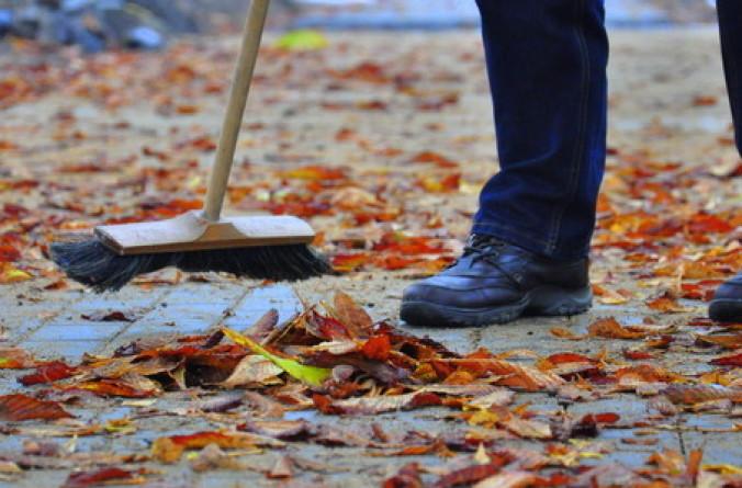 Program prac społecznie użytecznych na terenie Świdnicy