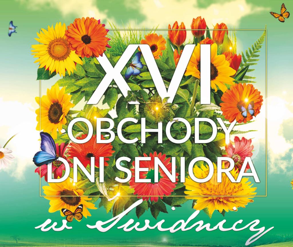 logo dni seniora